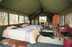 Spacious tents offer a great comfort at the Amboseli Porini Camp