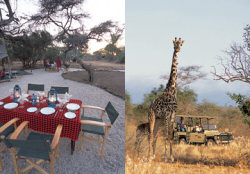 On Safari or at the Amboseli Porini Camp you are right in the middle of nature