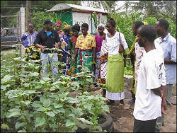 Coastweek - - Principles of a holistic approach in organic farming