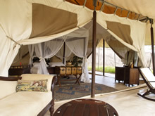 luxurious accommodation during your safari at the Cottars
