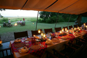 Dine in a beautiful atmosphere at the Elephant Pepper Camp