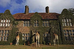 The Giraffe Manor Lodge